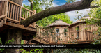 George-Clarke-Harptree-Court-Treehouse-updated