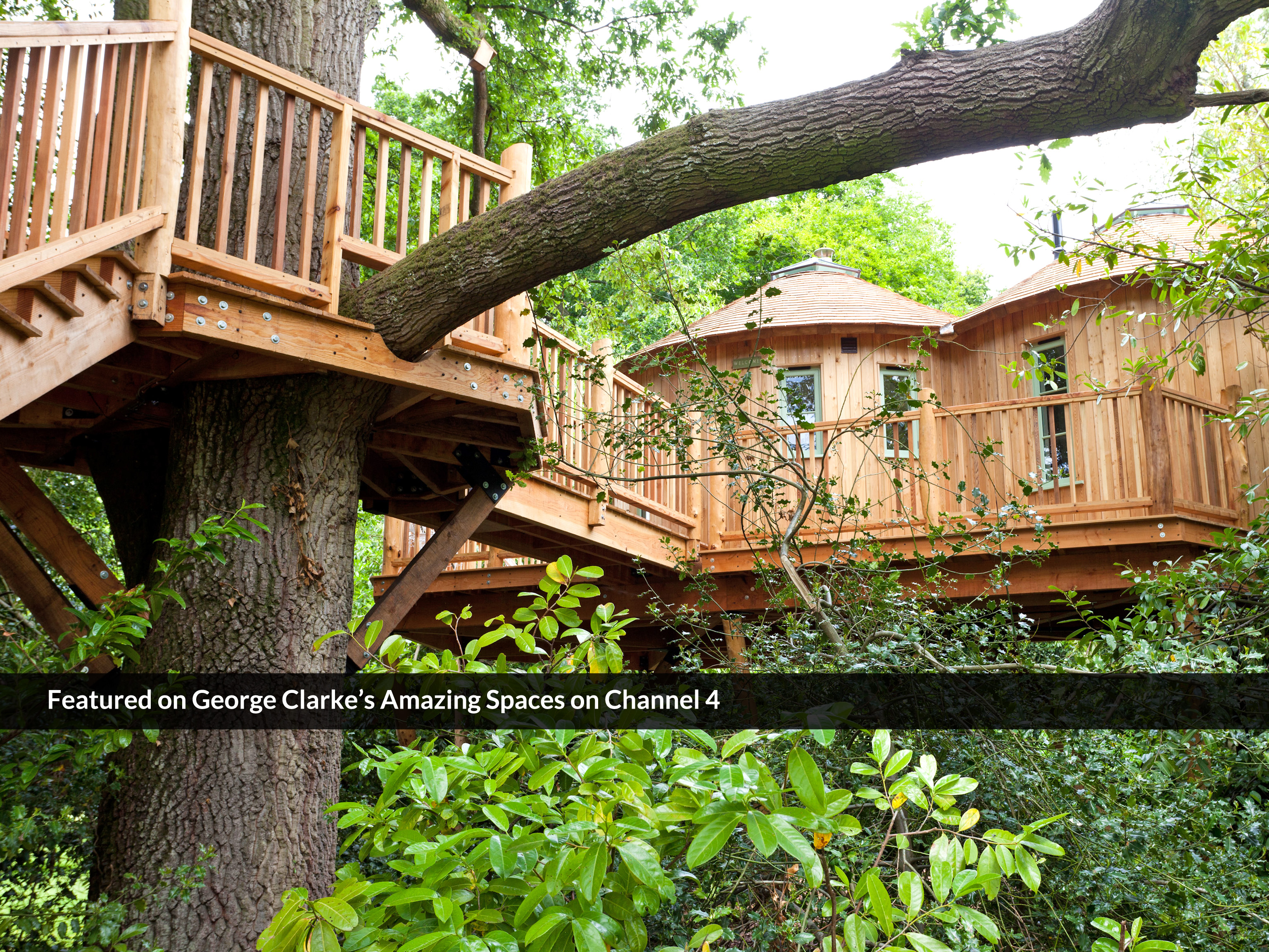 The Treehouse At Harptree Court Canopy Stars