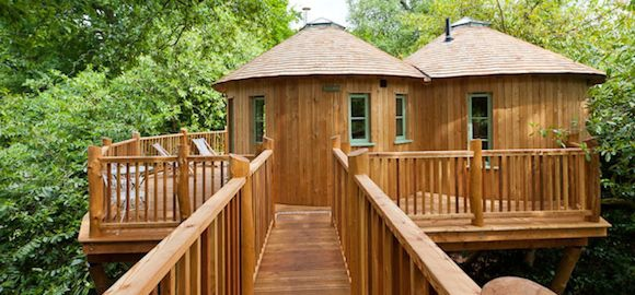 the treehouse at harptree court somerset canopy stars