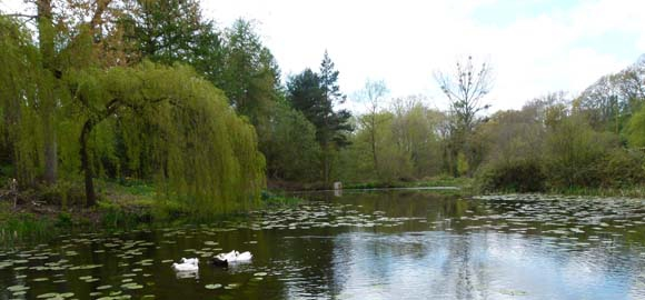 The Hatch, Worcestershire_duckpond2