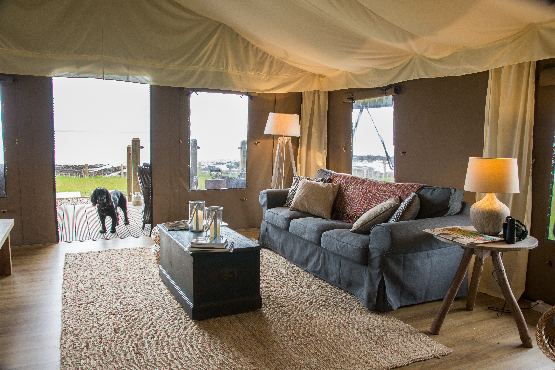 Kingfisher Lodge Canopy Stars