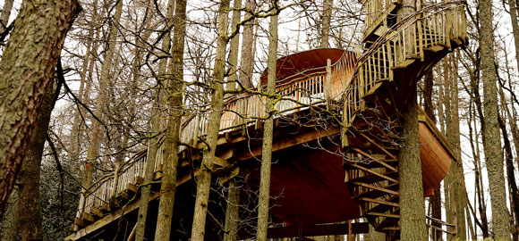 Gwdy hw treehouse in powys canopy stars for 8 living room tree houses powys