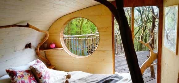 Living room treehouses powys canopy stars for 8 living room tree houses powys