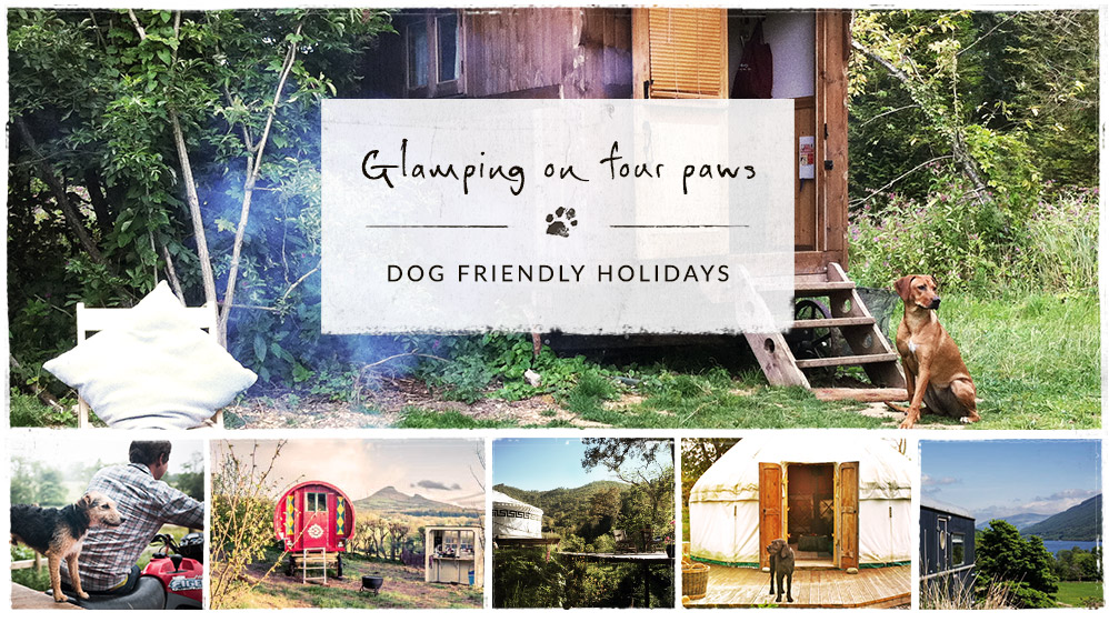 Dog Friendly Holidays Glamping And Accommodation From Canopy Stars