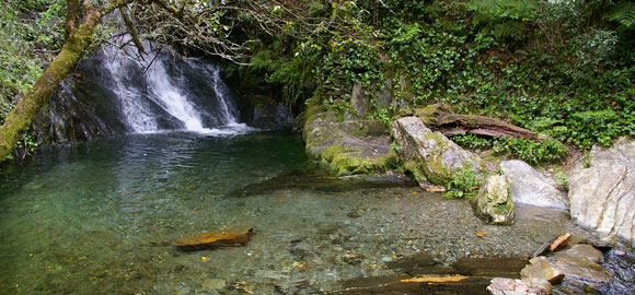 clear-pool-and-waterfall
