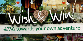 Wish & Win with Canopy & Stars