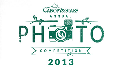 The Canopy & Stars Annual Photo Competition 2013