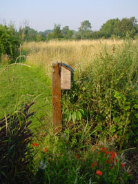 Guilden Gate Bird Box
