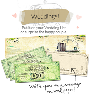 The Canopy & Stars Wedding Gift Card